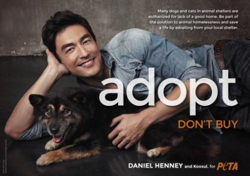 Daniel-Henney-Adopt-Dont-Buy-300-506x357